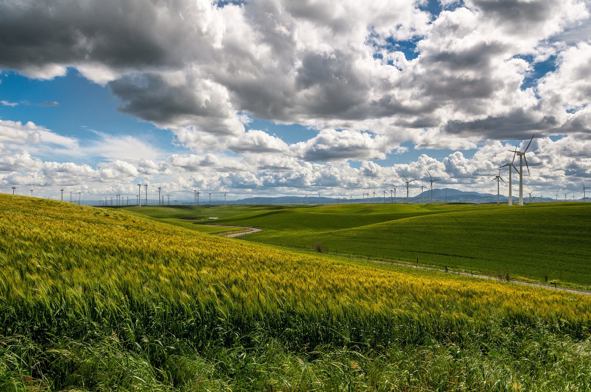 Wind Farm-Image by Free-Photos from Pixabay